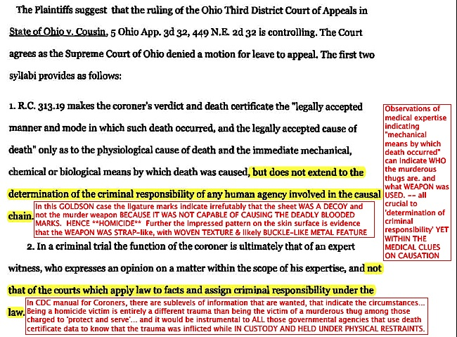 criminal responsibility and homicide essay